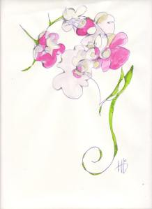 donnaflowers
