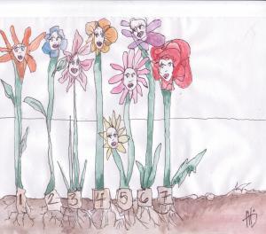 7flowers