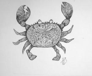 crabid