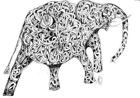 elephanteyebw