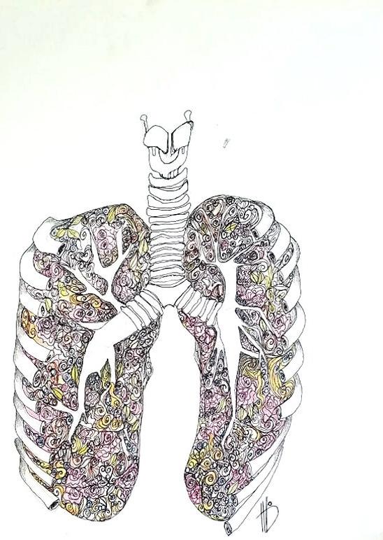 LungCavityedit
