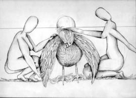 birdrepair